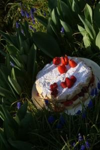 Mon-gâteau-de-printemps-2