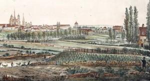 Vue de Dijon en 1822 avec les vignes BMD L Est CK I-20