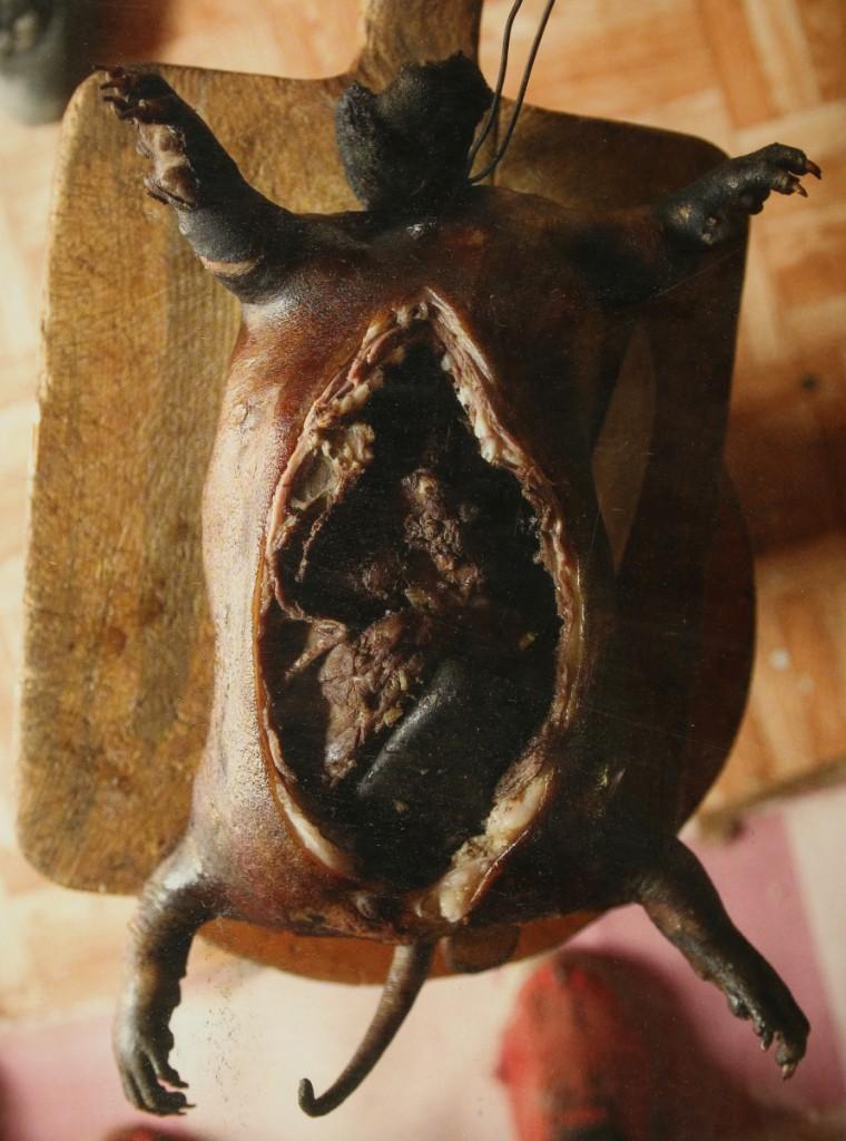 Les marmottes de mongolie happy apicius le blog du for Cuisine yourte