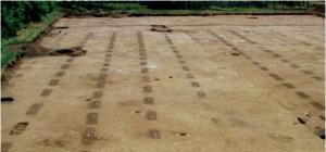 Plantations de vignes à Gevrey au 1er siècle 2C2L