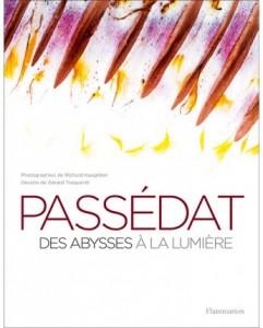 gerald-passedat-des-abysses-a-la-lumiere