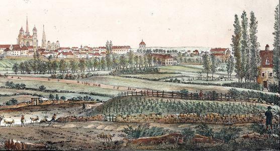 Photo 1 Vue de Dijon en 1822 avec vignes BM Dijon L Est CK I-20