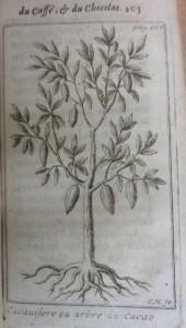 Le bon uasge du thé, 1687, cote 1767 cacaoyer